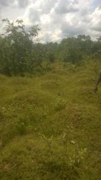 Commercial Land Land for sale Treasure park  Airport Road(Ikeja) Ikeja Lagos