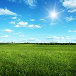 Commercial Land Land for sale Behind Iita Moniya Ibadan Oyo