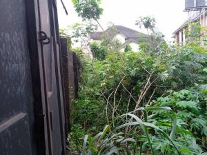 Land for sale Federal Housing Estate Off Mcc Road Owerri Owerri Imo