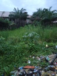 Residential Land for sale Royal Palm Will Estate Badore Ajah Lagos