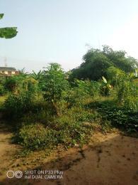 Mixed   Use Land Land for sale Megida ogunbewon str Onimaba estate Igando Ikotun/Igando Lagos