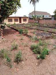 Residential Land Land for sale Santos estate Mangoro Ikeja Lagos