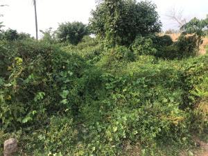 Mixed   Use Land Land for sale Aisu, Gbongan-Osogbo Road Ede South Osun