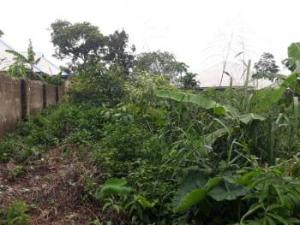 Residential Land Land for sale Nwaniba Road Uyo Akwa Ibom