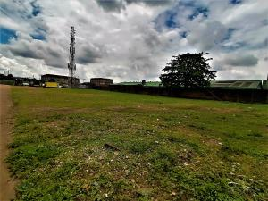 Industrial Land Land for rent Ogba Industrial Ogba Lagos