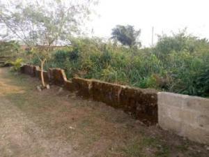 Mixed   Use Land Land for sale Beside Unity School Udo Uruan Uyo Akwa Ibom