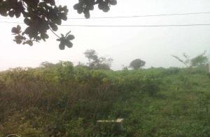 Land for sale Ewekoro, Ogun State, Ogun State Ewekoro Ogun