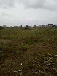 Mixed   Use Land Land for sale Opposite Trade Fair, Satellite Town Trade fair Apapa Lagos