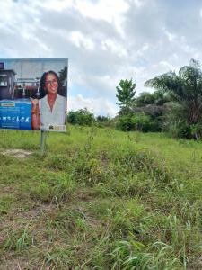 Residential Land Land for sale New International Airport Arapagi Oloko Ibeju-Lekki Lagos