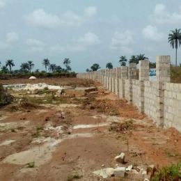 Land for sale Amakohia Ubi Imo