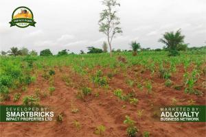 Commercial Land Land for sale Iwo Awo Road Ola-Oluwa Osun