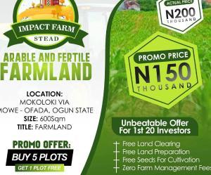 Land for sale Mokoloki via Mowe/Ofada Ojoolu Ifo Ogun