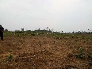 Mixed   Use Land Land for sale Shiraye road Imokun, Epe, Lagos Epe Road Epe Lagos