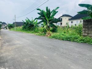 Land for sale At Paradise Estate Off Eneka - Eliozu link Road  Eneka Port Harcourt Rivers