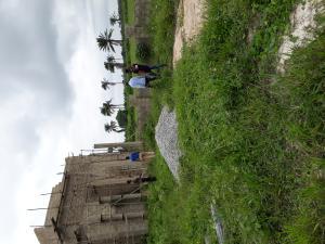 Residential Land Land for sale Owode Ota-Idiroko road/Tomori Ado Odo/Ota Ogun
