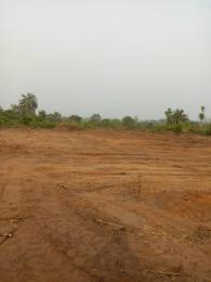 Mixed   Use Land Land for sale Nkanu Enugu