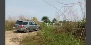 Mixed   Use Land Land for sale Dagbolu Osogbo Osun