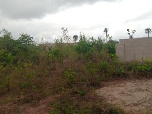 Residential Land Land for sale Behind Asaba int'l airport Asaba Delta