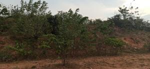 Land for sale Federal Secretariat Akure Ondo