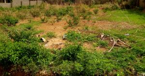 Residential Land Land for sale Rimi Kamazou Chikun Kaduna