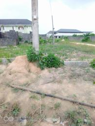 Residential Land Land for sale Pineapple estate Igbogbo Ikorodu Lagos