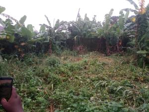 Residential Land Land for sale off old ring road by Abak road Uyo Akwa Ibom