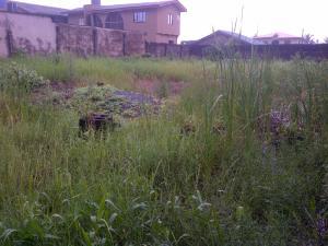 Land for sale - Ipakodo Ikorodu Lagos