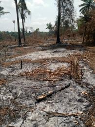 Mixed   Use Land Land for sale Olanla-ikereku village off Akinyele/Onidundu road, Ibadan Akinyele Oyo