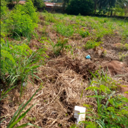 Residential Land Land for sale - Awka South Anambra
