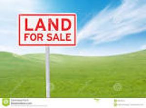 Land for sale Ikate Lekki Lagos