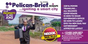 Mixed   Use Land Land for sale PelicanBrief Estate, Oke Mosan Abeokuta Ogun
