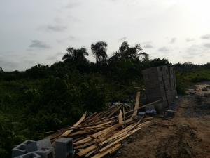 Land for sale By Rasaki bus stop Bucknor Isolo Lagos
