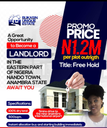 Joint   Venture Land Land for sale Nando Anambra East Anambra