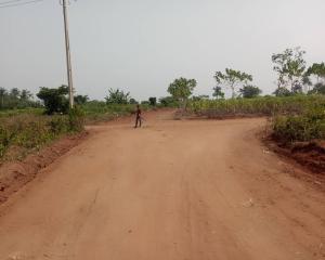 Residential Land Land for sale Off Ado Odo Ota Road Alapoti Town Ifo Ado Odo/Ota Ogun