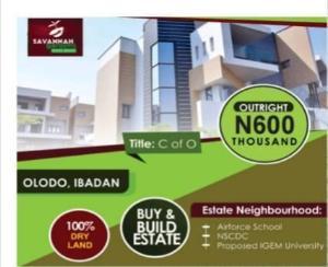 Mixed   Use Land Land for sale Olodo Iwo Rd Ibadan Oyo