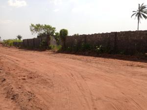 Residential Land Land for sale Opposit customs check point, Okpanam Asaba Delta