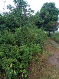 Mixed   Use Land Land for rent .. Ikorodu Lagos
