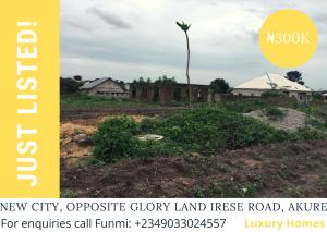 Mixed   Use Land Land for sale New City Estate along Irese Road, Akure. Akure Ondo