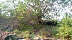 Residential Land for sale : Behind Dss Estate, Ile Titun Nihort Area Ibadan Jericho Ibadan Oyo
