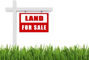 Land for sale owode ede Ede North Osun