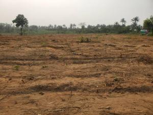 Residential Land Land for sale Primehood estate, Akanran, Olohunsogo Olomi Ibadan Oyo