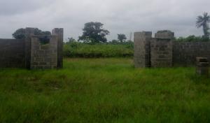 Mixed   Use Land Land for sale Lepia Village, Facing Express close to Dangote Jetty, Ibeju-Lekki Lagos