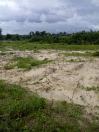 Commercial Land Land for sale Asegun Town, Swan Park Estate LaCampaigne Tropicana Ibeju-Lekki Lagos