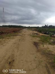 Land for sale Kayetoro  Eleko Ibeju-Lekki Lagos