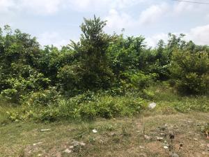 Land for sale Lafiaji Lekki Lagos