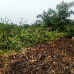 Residential Land Land for sale Eputu Eputu Ibeju-Lekki Lagos