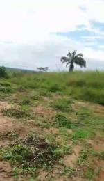 Land for sale Ozubulu Ekwusigo Anambra