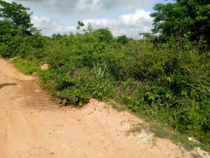 Mixed   Use Land Land for sale Lariken Ologuneru Eleyele Ibadan Oyo