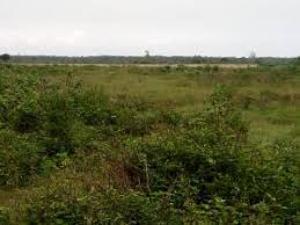 Residential Land Land for sale Oriyanrin Free Trade Zone Ibeju-Lekki Lagos