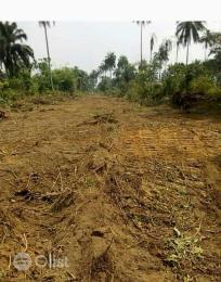 Land for sale Elele - Omuoku federal road Ogba-Egbema-Ndoni Rivers